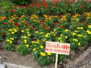 花いっぱい美化事業